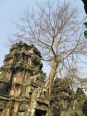 Ankor Thom - Siem Reap (MichaelTyler) Tags: cambodia east pre siem reap thom som ankor khan angkor wat ta rup bayon prohm preah banteay srie mebon