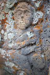 GNDEVANK-69 (RAFFI YOUREDJIAN PHOTOGRAPHY) Tags: old flowers etched church rock canon ancient cross cows bell carve holy monastery armenia bible 5d walls 1915 figures genocide carvings formations 1635 mkiii vank khachkar gndevank khackars
