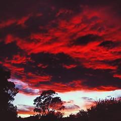 missing those desert sunsets #sunset #sunsets... (szellner) Tags: california sunset red sky cali clouds cloudy sunsets cloudporn bloodred skyporn skylovers uploaded:by=flickstagram instagram:photo=7960695290084465501442850998