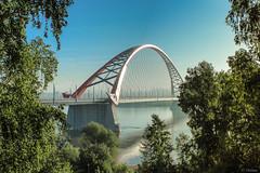 (Vialuna) Tags: bridge novosibirsk