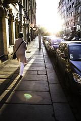 _8D09299 (Dirk Fietz Fotografie) Tags: dresden sachsen distagont228 d800 sunset light distagon282zf dirkfietzfotografie distagon282 distagont282 aflickrexplorephoto theunforgettablepictures carlzeiss zeiss