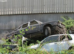 Graveyard (Alessio3373) Tags: abandoned graveyard rust decay neglected rusty forgotten rusted junkyard scrapyard scrap abandonment corrosion decayed corroded ruggine rustycars unloved unused scrapped abandonedcars junkcars bmwe12 scrappedcars forgottencars autoabbandonate