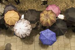 Paraguas ante la procesin (kum111) Tags: color rain umbrella circle lluvia colores triste paraguas crculo