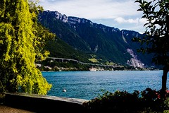 (drams21) Tags: lake canon switzerland suisse sunnyday montreux 50mm18 followme laclman canonphotography swissriviera 5dmarkii canon5dmarkii