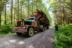 'Unlimited' Load (Jason Pineau) Tags: road lake canada truck river bc forestry britishcolumbia logs logging pitt trucking