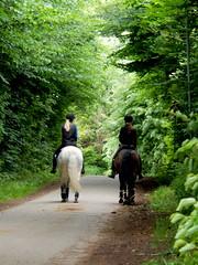 Girls on horses (Landanna) Tags: horse nature natur natuur hest paard girlsonhorses