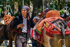 Ronda Romantica 2016 (Miguel.Herrera) Tags: andaluca ronda andalusia romantica tradiciones bandoleros sigma18250
