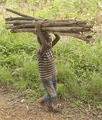 single sandal boy labor (Pejasar) Tags: boy child labor singlesandal barefoot oneshoe work load wood gatherer chores ghana westafrica africa