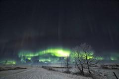 Moon light night (John Andersen (JPAndersen images)) Tags: january aurora