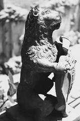 dettagli alcazar... (piera tedde) Tags: monochrome monocromo sevilla arte andalucia alcazar dettagli andalusia leone biancoenero spagna siviglia