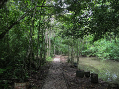 "Panama City: Parque Natural Metropolitano <a style=""margin-left:10px; font-size:0.8em;"" href=""http://www.flickr.com/photos/127723101@N04/27263405411/"" target=""_blank"">@flickr</a>"