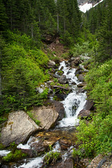 Trail Side Stream (leah.kling) Tags: trip trees sky mountain lake canada mountains green water forest river landscape photography waterfall stream hike trail alberta waterton