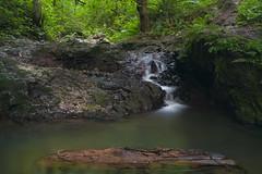Trickle (Flat-Sax Jones) Tags: park water oregon creek forest 35mm portland nikon stream long exposure d610