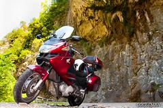 Desfiladero de los Beyos (DOCESMAN) Tags: road travel viaje honda landscape spain asturias motorbike moto motorcycle biker motor rider cantabria deauville picosdeeuropa nt700v