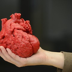 3D Printing Technology At The Service Of Health (HealthyEve) Tags: three 3d technology printer replacement bio structure application patient organ health research printing medicine organs surgeons intervention implant dimensional replace patients replicas implantation researches bioprinting