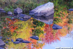 Adirondack Autumn Reflection (freshairphoto) Tags: adirondack park reflection autumn fall leaves color water trees rocks artspearing nikon 18200 zoom tripod