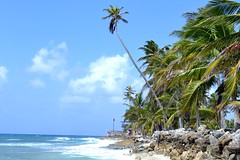 Impacto (ariel mrtt) Tags: mar nikon colombia playa isla caribe sanandrs d3100