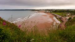 Paignton coastline (S.R.Murphy) Tags: beach coast coastallandscape colour beachhuts panoramic panorama coastline sea seascape canon6d canon1740mmf4l