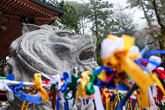 Futarasan Jinja I (Douguerreotype) Tags: statue japan temple ribbons shrine bokeh buddhist lion nikko
