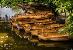 Waiting for the rowers... (+Pattycake+) Tags: wood light green water leaves river suffolk shadows textures dappled essex dedham rowboats dedhamvale constablecountry moored riverstour