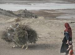 Iraqi Family (Kevin B Knott) Tags: people landscape war desert iraq middleeast international sliceoflife wartime wariniraq nasariyah protecttheinnocent civiliansinwar