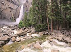 Yosemite Lower Falls (Steve Major) Tags: usa water creek landscape waterfall nationalpark outdoor calfornia sigma1020 stevemajor canon60d yosemitelowerfalls