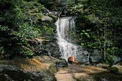 Valley of the Waters, Wentworth Falls NSW (Jennifer-Anne.BROWN) Tags: blue mountains green water speed waterfall nationalpark slow australia bluemountains falls wentworth nsw shutter handheld wentworthfalls valleyofthewaters nswnpws
