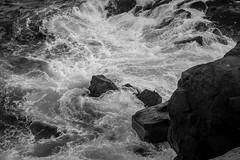 looking down, rocks, surf, waves, between Norton's Ledges and Christmas Cove, Monhegan, Maine, Nikon D40, Soligor 35-70mm lens, 6.27.16 (steve aimone) Tags: lookingdown rocks surf waves movement monhegan monheganisland maine monochrome monochromatic blackandwhite nikond40 swirling seascape atlanticocean ocean