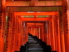 Fushimi Inari Taisha (Kyoto (cattan2011) Tags: travel red building japan landscape temple kyoto arches scrolls traveltuesday fushimiinaritaisha