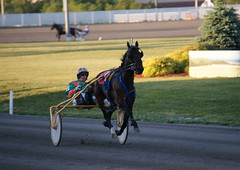 Mozartsplace, June 30, 2016 (Taylor Racing) Tags: red racing ponder harness shores pei charlottetown artsplace mozartsplace