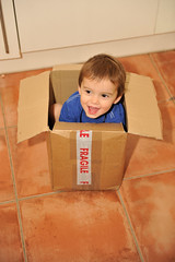 Fragile (MrHRdg) Tags: kitchen box carton fragile