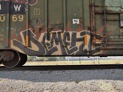 DEMENT (BGIZ) Tags: art graffiti trains dement boxcars