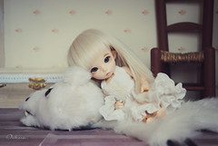 Victoria~ (~~ Oshua~~) Tags: face ball hair doll photographie victoria cutie collection blond wig blonde bjd custo diorama dollhouse ante poupe jointed balljointeddoll crobidoll oshua pukife