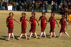 Naga tribals - Rituals and Dances (VinayakH) Tags: people india tribal naga kohima nagaland kisama northeastindia hornbillfestival