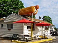 Hot Diggity Dogs, Medford, NY (Robby Virus) Tags: roof dog newyork hot rooftop dogs sign restaurant town hotdog parking rear longisland meat weiner bun medford portjefferson diggity