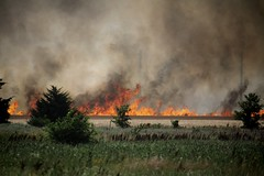 Wildfire (matthileo) Tags: fire wichita wildfire