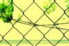 preso (Fabrício C. Araújo) Tags: alambrado arame farpado