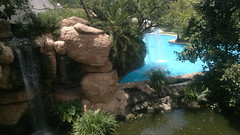 Cooling Blue's (Rckr88) Tags: pool gardens forest southafrica waterfall resort pools lostcity suncity