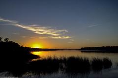 "O nascer da grande estrela no Parque Estadual Acaraí. • <a style=""font-size:0.8em;"" href=""http://www.flickr.com/photos/39546249@N07/9377092553/"" target=""_blank"">View on Flickr</a>"