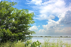 Just Clouds & Trees!! (True HDR) (VikramDeep) Tags: blue trees sky panorama art nature beautiful weather bike clouds canon photography rebel amazing pond sunday reservoir monsoon hdr 18mm friendshipday powerplants 2013 auguts eos550d