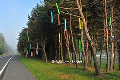 Crayon Trees (Throwingbull) Tags: elephant museum fun colorful candy mr pennsylvania pa mister crayons crayon eds emporium orrtanna