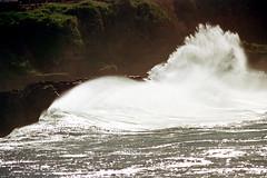 16-579 (ndpa / s. lundeen, archivist) Tags: ocean cliff color film water 35mm hawaii coast rocks surf waves break oahu nick wave spray pacificocean northshore honolulu 16 splash 1970s 1973 waimeabay breakingwave crashingwaves dewolf breakingwaves nickdewolf photographbynickdewolf reel16