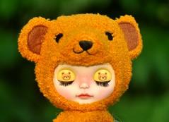 How many bears do u see? *Mango Pudding**
