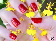 1. Desafio das 31 Unhas: Vermelho (anaclara_po) Tags: red flores yellow polish vermelho nails nailpolish unhas rednails esmalte naillacquer desafiodas31unhas