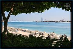 Dubai, United Arab Emirates (Wioletta Ciolkiewicz) Tags: city beach dubai uae ciudad playa arabic stadt emirate unitedarabemirates ville jumeirah citt zea miasto  plaa duba vereinigtearabischeemirate palmjumeirah  dubaj emiratiarabiuniti zjednoczoneemiratyarabskie  emiratosrabesunidos wiolettaciolkiewicz