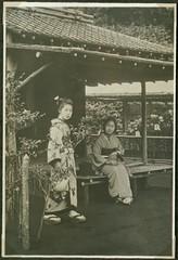 Women in a chrysanthemum garden, Japan.