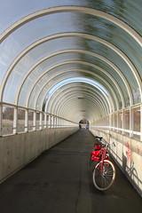 Tivoli fietsersbrug Leuven (Kristel Van Loock) Tags: bridge bike bicycle leuven tivoli belgium belgique drieduizend belgië tunnel bici brug belgica vélo louvain fiets flanders belgien bicicletta belgio biciclette vlaanderen diepte flandre vlaamsbrabant overkapping fietserstunnel lovanio fiandre fietsersbrug leveninleuven