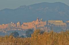 A different view (Jokermanssx) Tags: sardegna castello cagliari molentargius stagno riccardodeiana