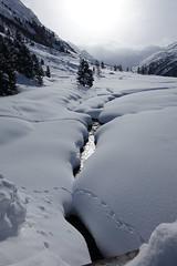 Val Roseg (RS_1978) Tags: schnee winter snow mountains alps alpes schweiz nieve sneeuw berge neve che neige alpen sn montagnes graubnden samedan    sonycybershotdscrx10