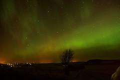 27-2-2014 (Copperhobnob) Tags: landscape scotland aberdeenshire dynamic aurora northernlights auroraborealis